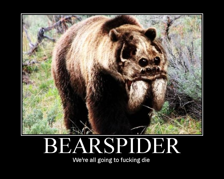 spiderbear - Click To View Image
