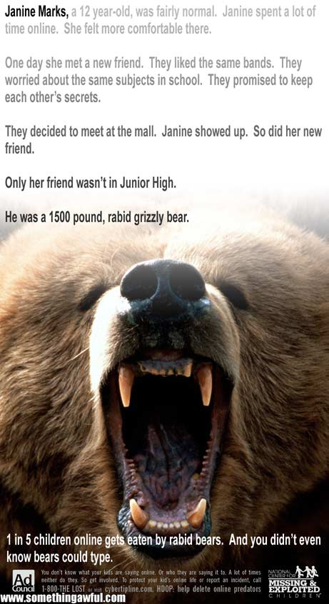 bears - Click To View Image