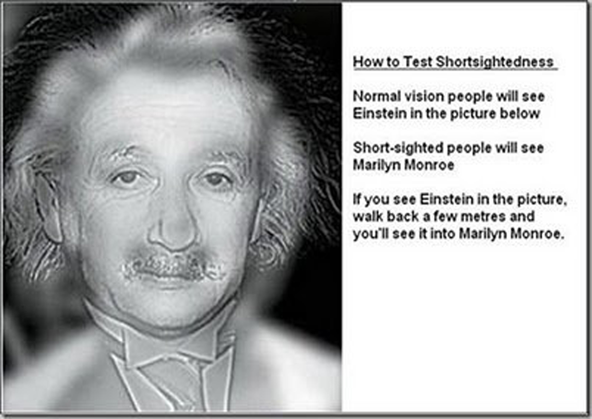 Einstein or Marilyn? - Click To View Image