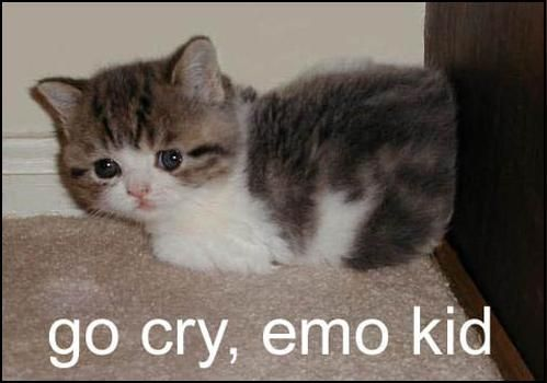 go cry emo kid - Click To View Image