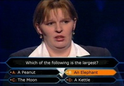 millionaire-idiot - Click To View Image