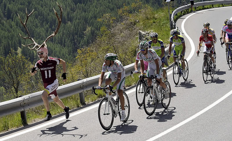 Antler Bike Race - Click To View Image