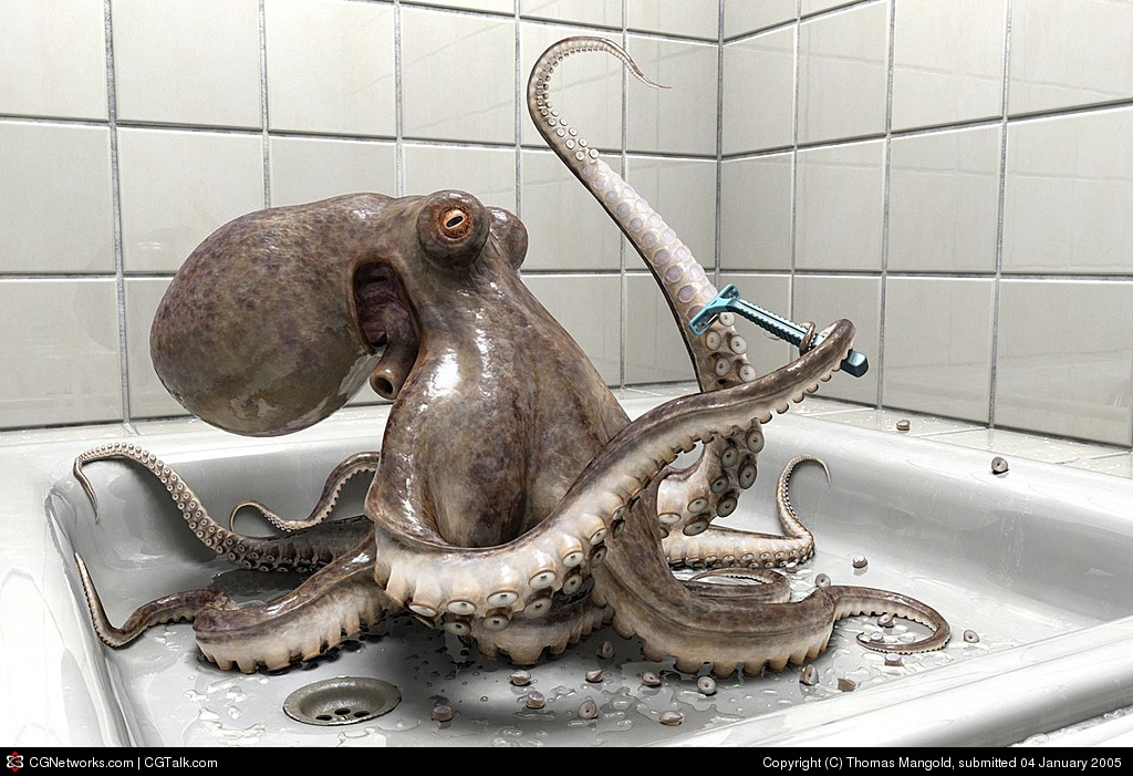 Shaving Octopus - Click To View Image